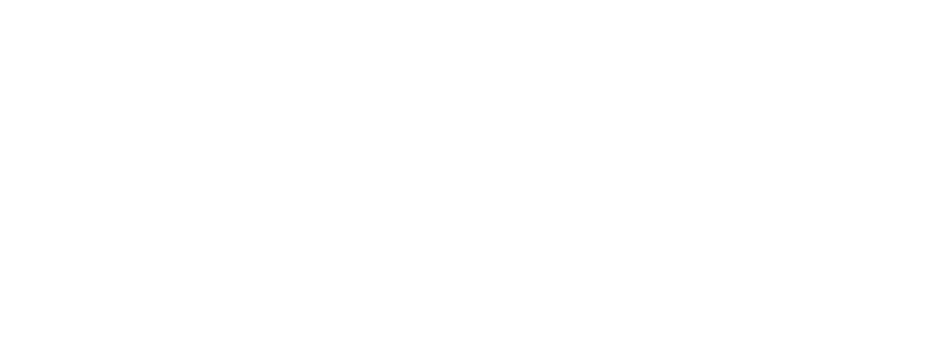 FLEX China 2019 Logo