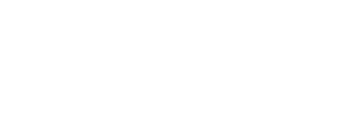 FLEX SEA 2019 Logo