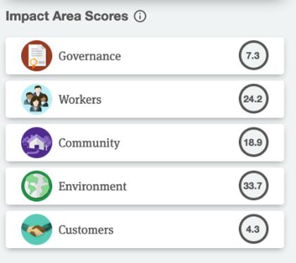 B Corp impact area scores