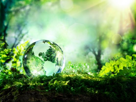 Climate Change: SEMI Members Rise to Top in Commitment to Reduce Greenhouse Gas Emissions
